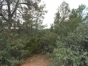 Photo of 2301 E FEATHER PLUME Lane #626, Payson, AZ 85541 (MLS # 72764)