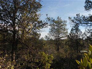 Photo of 100 N FEATHER PLUME Circle #610, Payson, AZ 85541 (MLS # 72840)