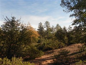 Photo of 111 N FEATHER PLUME Circle #616, Payson, AZ 85541 (MLS # 72841)