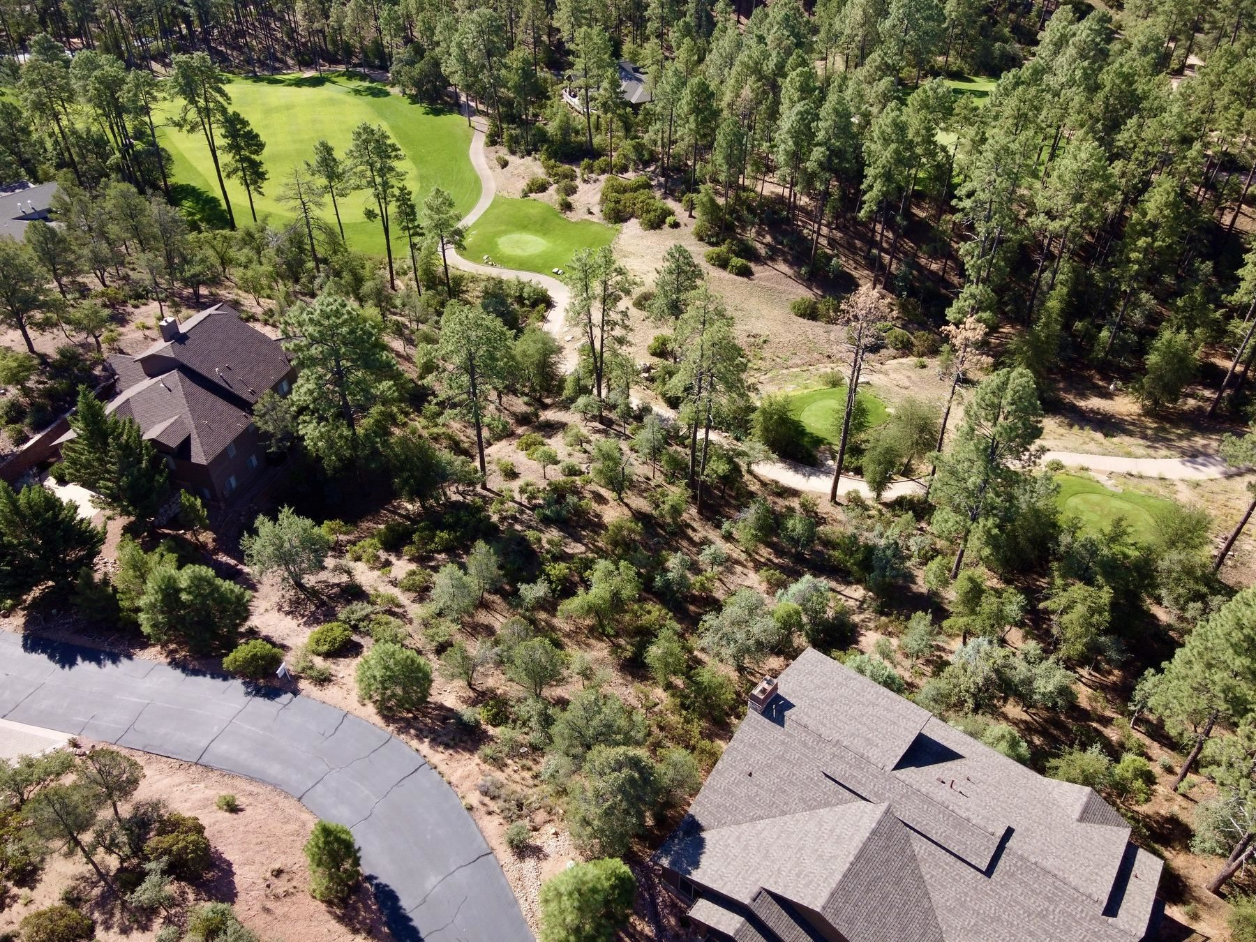 Photo of 505 N Grapevine Drive #434, Payson, AZ 85541 (MLS # 82873)