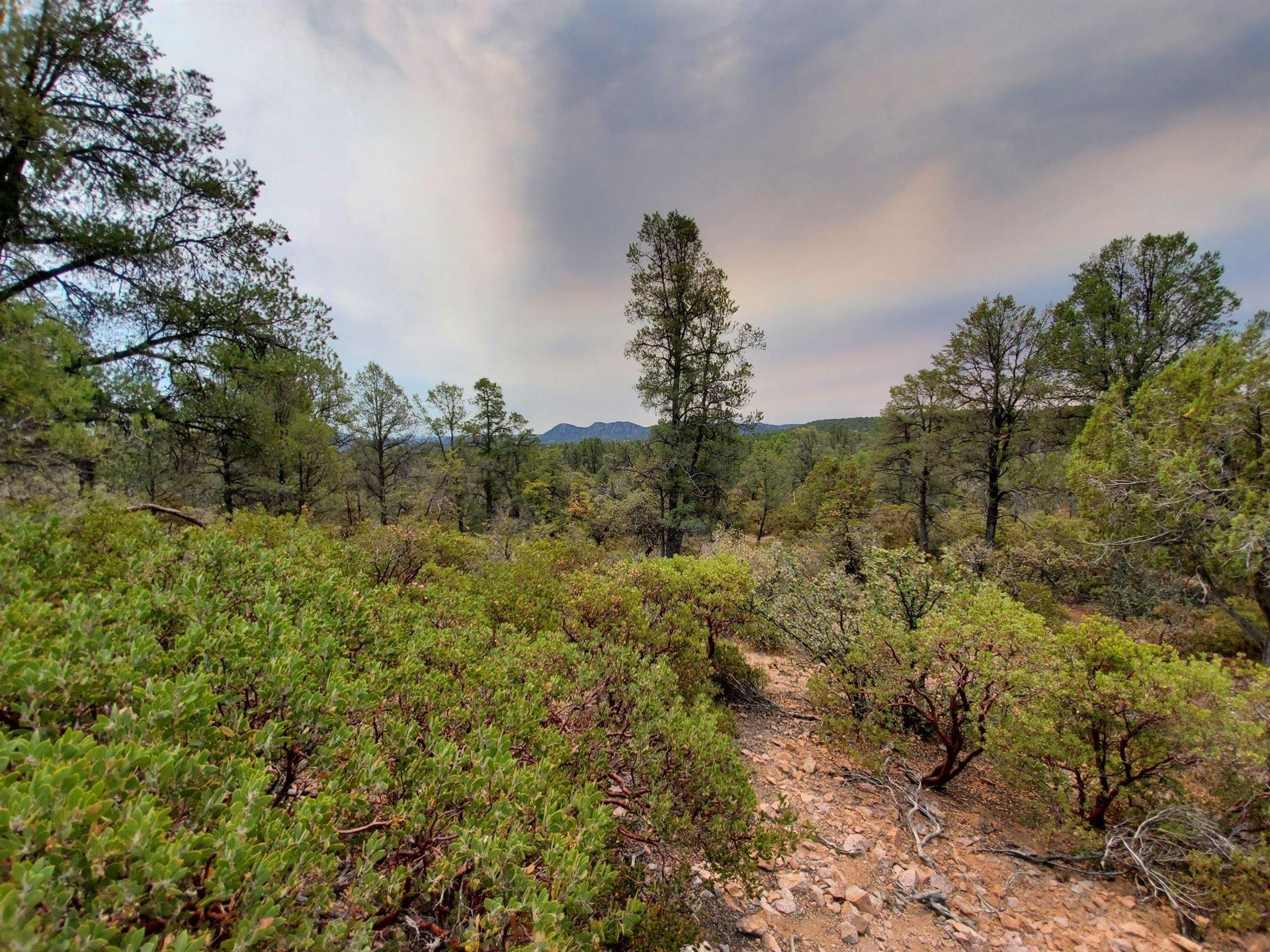 Photo of 1403 E Underwood Lane #18C, Payson, AZ 85541 (MLS # 84939)