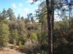 Photo of 115 N FEATHER PLUME Circle #618, Payson, AZ 85541 (MLS # 72953)