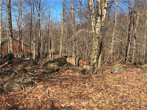 Photo of 0 Dakota Road, Old Forge, NY 13420 (MLS # S1266005)