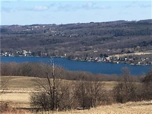 Photo of 00 Becker Road, Skaneateles, NY 13152 (MLS # S1183087)