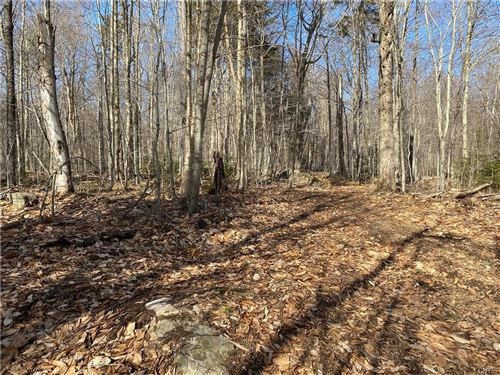 Photo of 00 Tuttle Road, Old Forge, NY 13420 (MLS # S1330133)