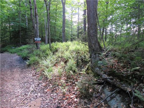 Photo of 0 Palisades Road, Old Forge, NY 13420 (MLS # S1252173)