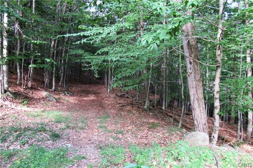 Photo of 0000 Mohawk Drive W, Old Forge, NY 13420 (MLS # S1342191)