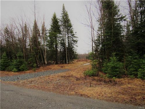 Photo of 138 Air Port Loop, Old Forge, NY 13420 (MLS # S1329277)