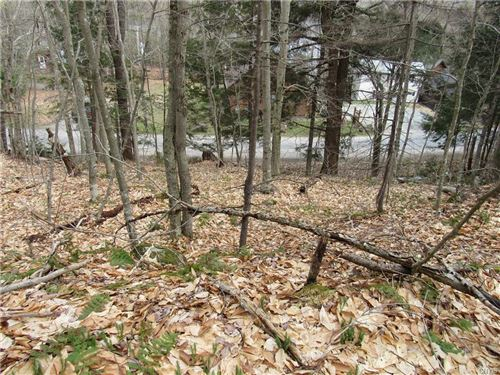 Photo of 0000 Petrie Road, Old Forge, NY 13420 (MLS # S1335297)