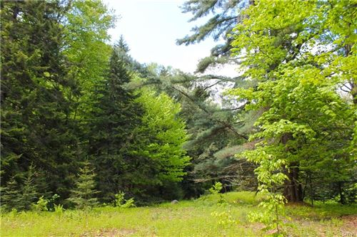 Photo of 1423 Big Moose Rd Road, Old Forge, NY 13331 (MLS # S1307368)