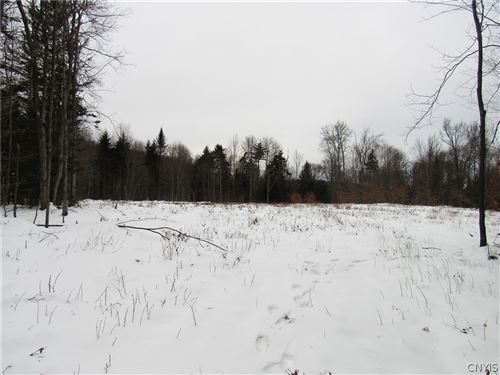 Photo of 173 Taxi Way, Old Forge, NY 13420 (MLS # S1357567)