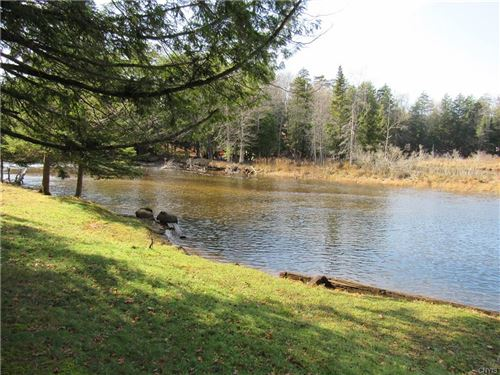 Photo of 109 Riverview Terrace, Old Forge, NY 13420 (MLS # S1303640)