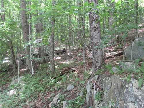 Photo of 00 Mohawk Dr E, Old Forge, NY 13420 (MLS # S1360647)