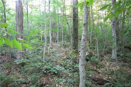 Photo of 0 Twitchell Road, Eagle Bay, NY 13331 (MLS # S1298703)