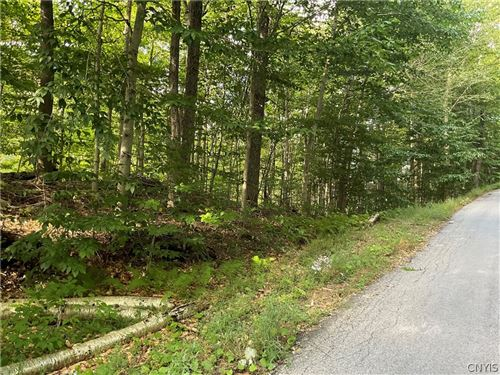 Photo of 0 State Route 28, Old Forge, NY 13420 (MLS # S1365705)