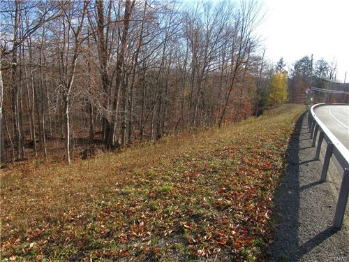 Photo of 000000 State Route 28, Old Forge, NY 13420 (MLS # S1304933)