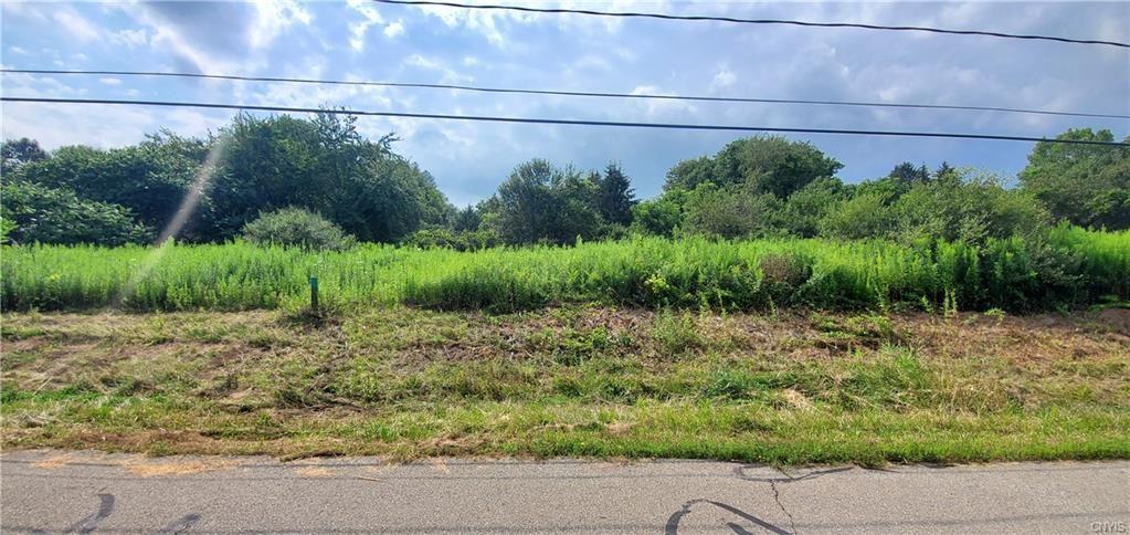 4049 College View Drive, Cortland, NY 13045 - #: S1358940