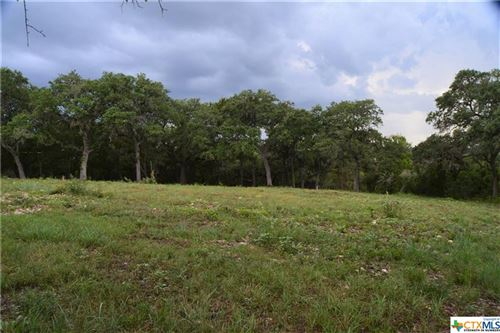 Photo of 531 River Chase Way, New Braunfels, TX 78132 (MLS # 447420)