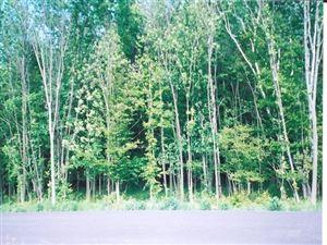 Photo of Lot 19 WOODRIDGE DRIVE, Marshfield, WI 54449 (MLS # 1805179)