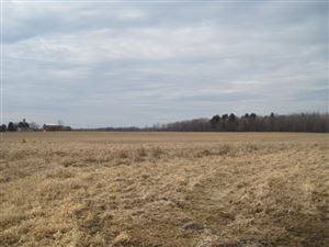 Photo of 000 STATE HIGHWAY 80, Pittsville, WI 54466 (MLS # 21808548)