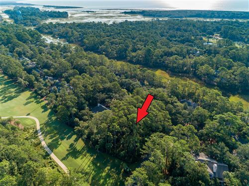 Photo of 2510 Cat Tail Pond Road, Johns Island, SC 29455 (MLS # 18011406)