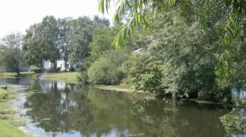 Photo of 206 Waterwood Drive, Goose Creek, SC 29445 (MLS # 21001422)