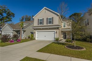 Photo of 3844 Tupelo Branch, Awendaw, SC 29429 (MLS # 19008436)