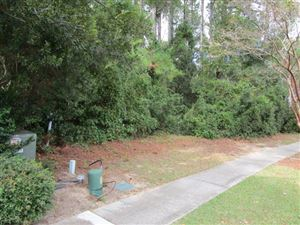 Photo of 727 Olde Central Way, Mount Pleasant, SC 29464 (MLS # 18028512)