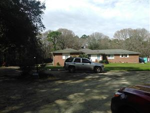 Photo of 9270 N Hwy 17, McClellanville, SC 29458 (MLS # 18005605)