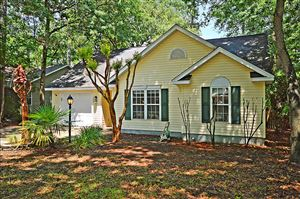 Photo of 3608 Walkers Ferry Ln, Johns Island, SC 29455 (MLS # 19017630)