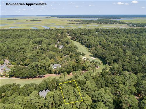 Photo of 3325 Coon Hollow Drive, Johns Island, SC 29455 (MLS # 18012648)