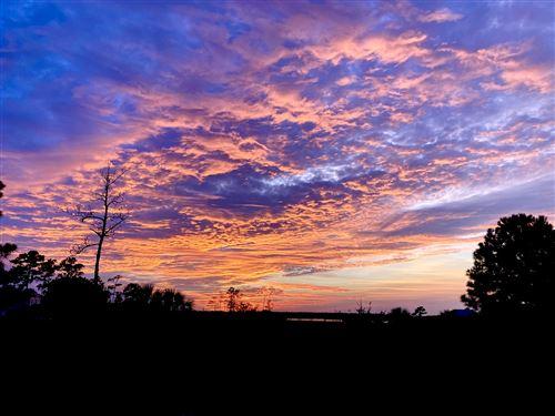 Photo of 2219 Branch Creek Drive, Mount Pleasant, SC 29466 (MLS # 21016718)