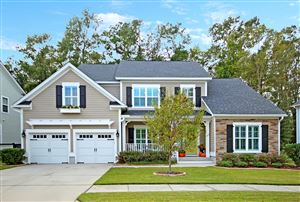 Photo of 203 Donning Drive, Summerville, SC 29483 (MLS # 19029742)