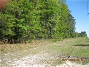 Photo of 0 Cottonwood Lane, Walterboro, SC 29488 (MLS # 18010806)