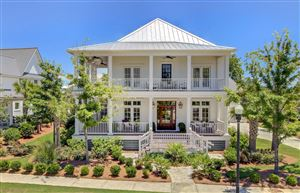 Photo of 135 Brailsford Street, Charleston, SC 29492 (MLS # 19017901)