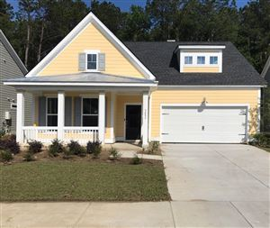 Photo of 3053 Caspian Court, Mount Pleasant, SC 29466 (MLS # 18032919)