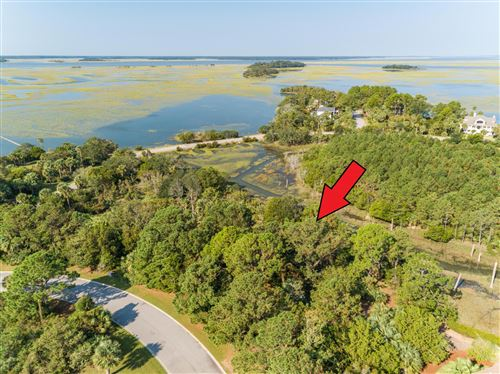 Photo of 1207 N Jenkins Lagoon Drive, Seabrook Island, SC 29455 (MLS # 17027934)