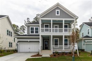 Photo of 3573 Crosstrees Lane, Mount Pleasant, SC 29466 (MLS # 19017961)