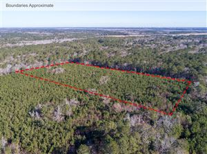 Photo of 0 Hut Rd, Johns Island, SC 29455 (MLS # 18002998)
