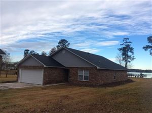 Photo of 1088 Shore Drive, Manning, SC 29102 (MLS # 18032998)