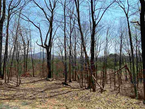 Photo of 1318 RODES VALLEY DR #1, NELLYSFORD, VA 22958 (MLS # 602010)