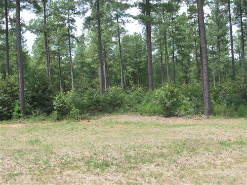 Photo of 11 SCLATERS FORD RD #11, PALMYRA, VA 22963 (MLS # 602027)