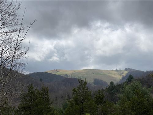 Photo of TBD NONE, BLUE GRASS, VA 24413 (MLS # 616084)