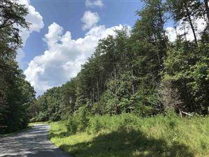 Photo of 1324 DURRETT RIDGE RD, EARLYSVILLE, VA 22936 (MLS # 594105)