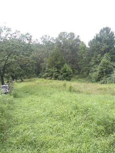 Photo of 1384 CHAPMAN RD, STANARDSVILLE, VA 22973 (MLS # 607115)