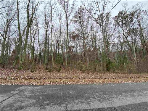 Photo of 87 RICHARDSON DR, LOUISA, VA 23093 (MLS # 611149)