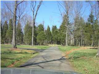 Photo of Lot 17 TANAGER WOODS CT #LOT 17, EARLYSVILLE, VA 22936 (MLS # 441192)