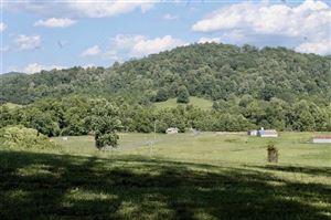 Photo of 7000 BLACKWELLS HOLLOW RD, CROZET, VA 22932 (MLS # 594218)