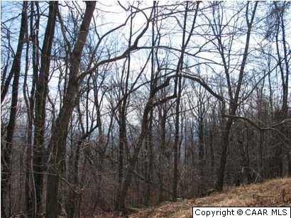 Photo of 1663 CRAWFORDS CLIMB, NELLYSFORD, VA 22958 (MLS # 599347)
