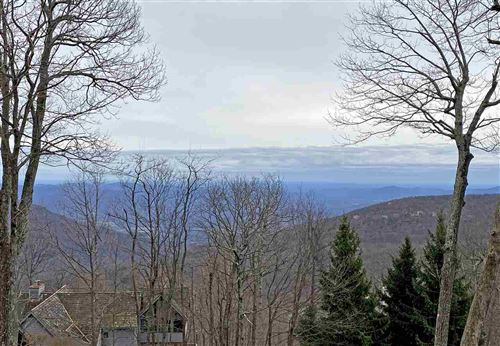 Photo of 328 CHESTNUT PL, WINTERGREEN RESORT, VA 22967 (MLS # 600397)